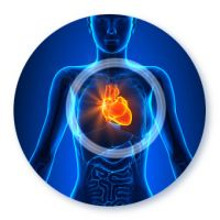 Pakiet sercowy